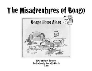 The Misadventures of Bongo