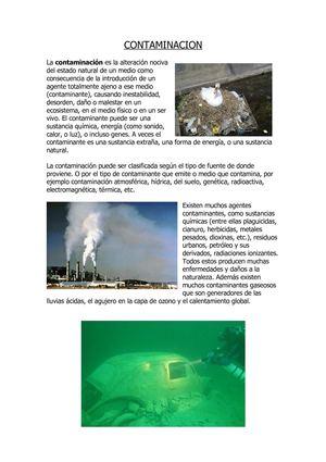 Calaméo La Contaminación