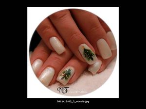 Nail Technology NT - Nail Art Design