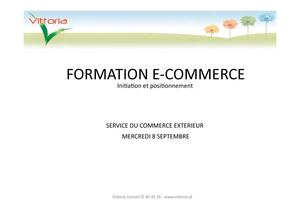 Formation e-commerce. Initiation et positionnement.