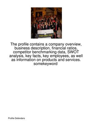 The-Profile-Contains-A-Company-Overview,-Business-6