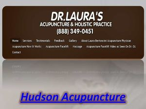 Acupuncture in Hudson Florida