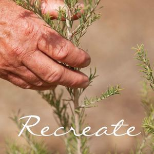 The Spicers 'Recreate' Program, in partnership with Landcare Australia