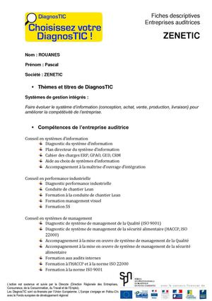 Fiche DiagnosTIC - ZENETIC