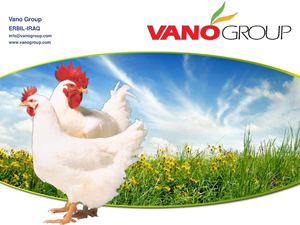VANO IS FULLY INTEGRATED POULTRY GROUP