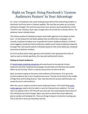 Right on Target: Using Facebook's 'Custom Audiences Feature' to Your Advantage
