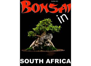 Bonsai in South Africa Nov/Dec 2012