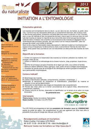 Formation initiation à l'entomologie