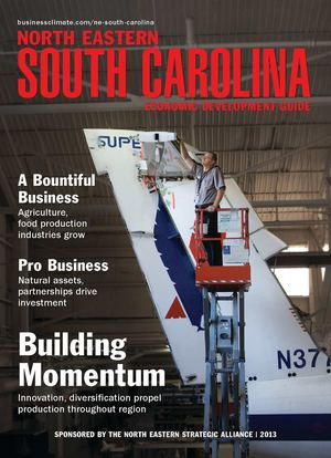 North Eastern South Carolina Economic Development Guide 2013