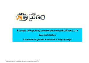Exemple de reporting commercial