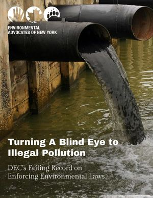 Turning a Blind Eye to Illegal Pollution