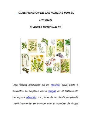 Calam o clasificacion de las plantas por su utilidad for Plantas ornamentales y medicinales