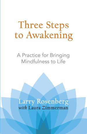 Three Steps to Awakening_PB