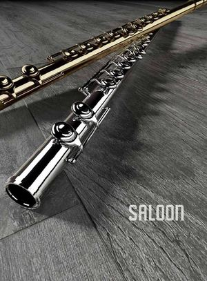 DELCONCA_FOLDER SALOON