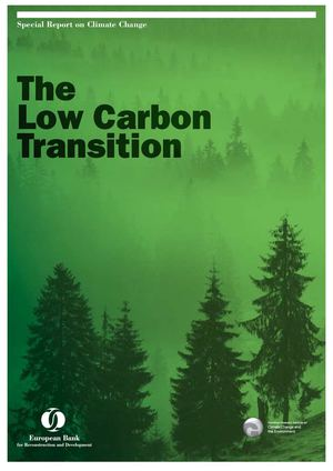 The Low Carbon Transition