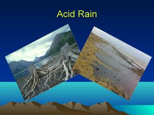 Acid Rains-my