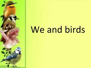 We and birds