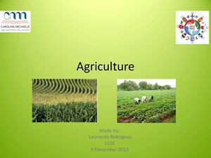 Agriculture - by Leonardo Rodrigues - 11SE.pdf