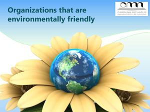 Organizations that are environmentally friendly - Sofia Pinho 11CT1.pdf