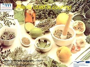 Plants used in cooking- by Mariana Marqueiro 11CT1.pdf