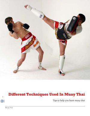 Different Techniques Used In Muay Thai