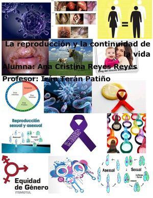 Significado de reproduccion asexual wikipedia the free