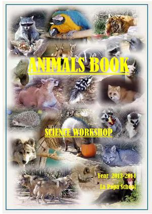 Animals workshop