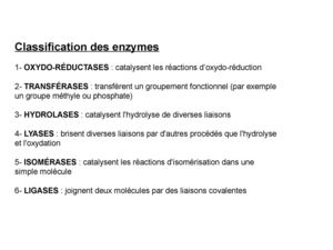 Classification des enzymes