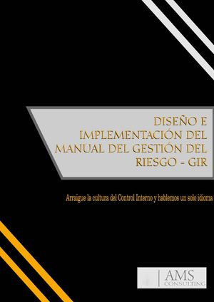 Manual de Implementación de GIR