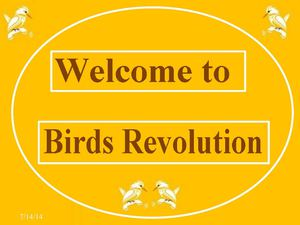 Welcome to Birds Revolution Online Survey
