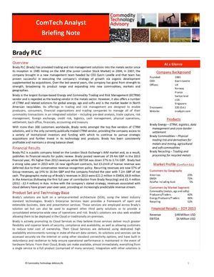 Analyst Briefing Note Brady