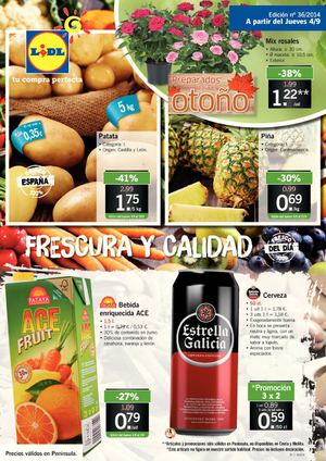 Folleto Lidl nº 36/2014