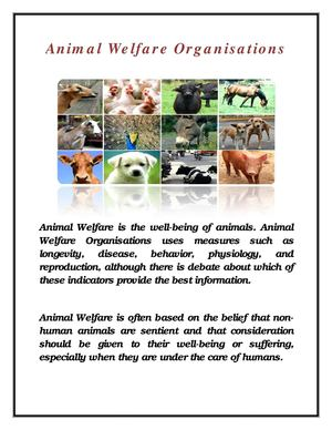 For The Love Of Wildlife-Animal Welfare Volunteer and Organisations