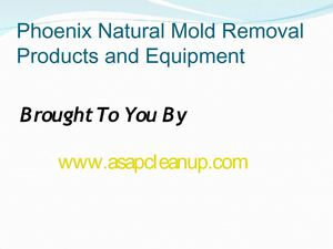 Phoenix Natural Mold Removal Products and Equipment