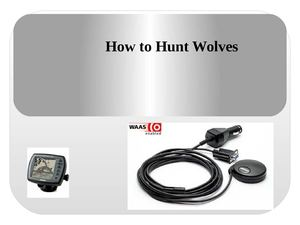 How to Hunt Wolves