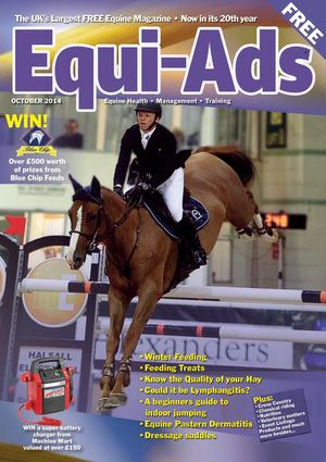 Equi Ads October 2014