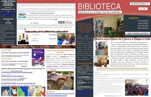 Newsletter Nº 2a