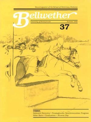 Bellwether 37, Summer 1995