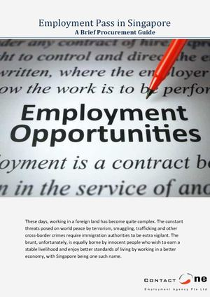 A Brief Procurement Guide About Employment Pass in Singapore