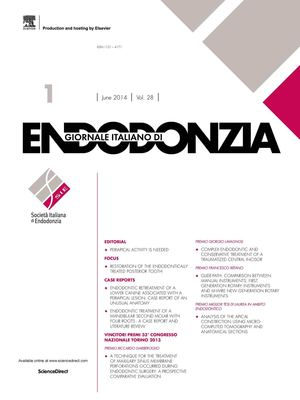 Frasi Sulla Vita 192 Pixel.Calameo Giornale Italiano Di Endodonzia N1 Vol 28 Giugno 2014