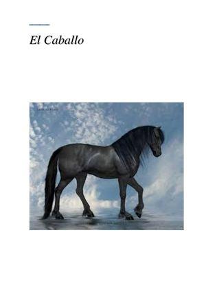 Calaméo - El Caballo
