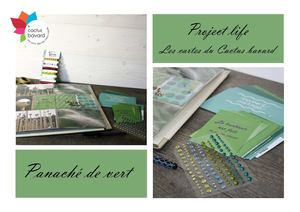 Catalogue Cartes Project Life Camaieu Vert