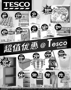 great-savings-at-tesco-offers-valid-from-now-till-march-29-2015-chinese-version-62852
