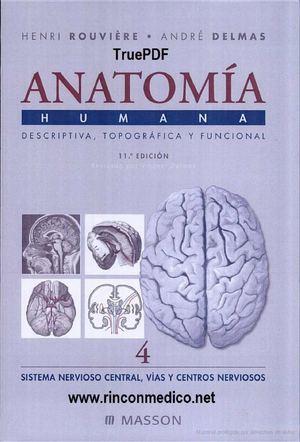 Calaméo - TOMO4 Anatomia Humana Descriptiva Topografica Funcional ...