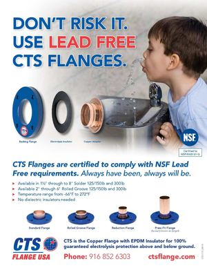 CTS USA Lead Free Flyer