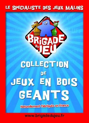 Catalogue Animations Jeux Geant V3