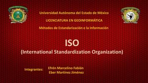 International Standardization Organization