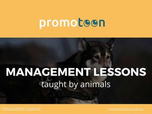 The Promotoon Show Episode 10 Lessons From The Animal Kingdom