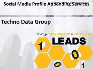 Social Media Profile Appending Services