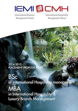 2014-2015 PLACEMENT PROFESSIONNEL - BSc & MBA